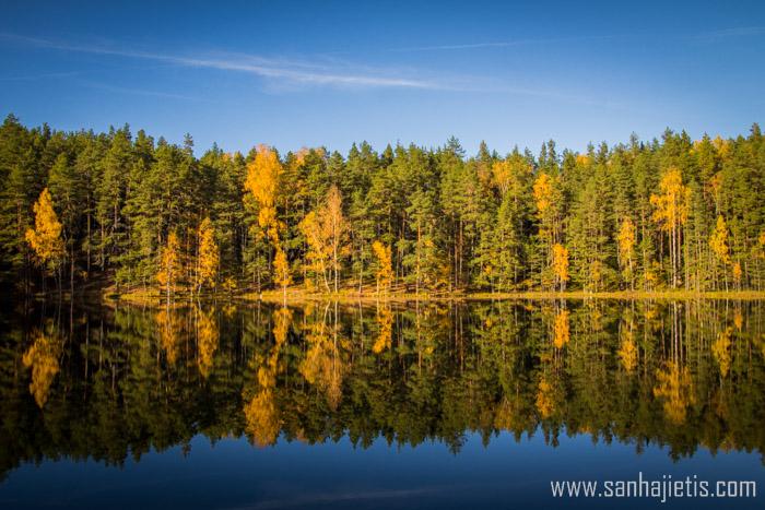 Zelta rudens Krāslavā