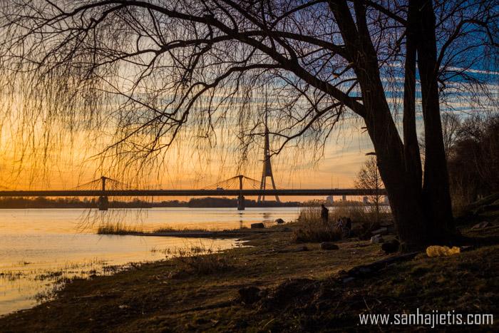 Saulriets Rīgā pie Dienvidu tilta